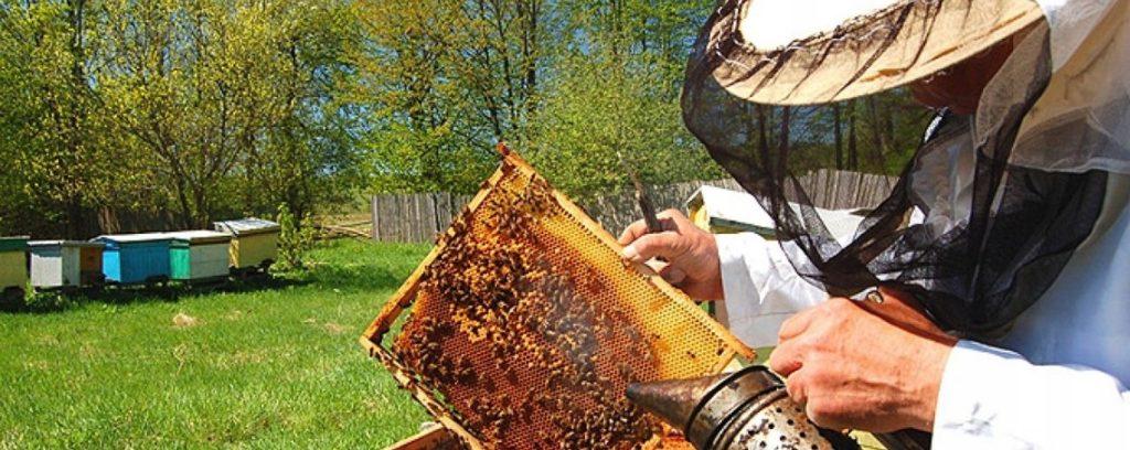 Оборудование для пчеловодства из нержавейки